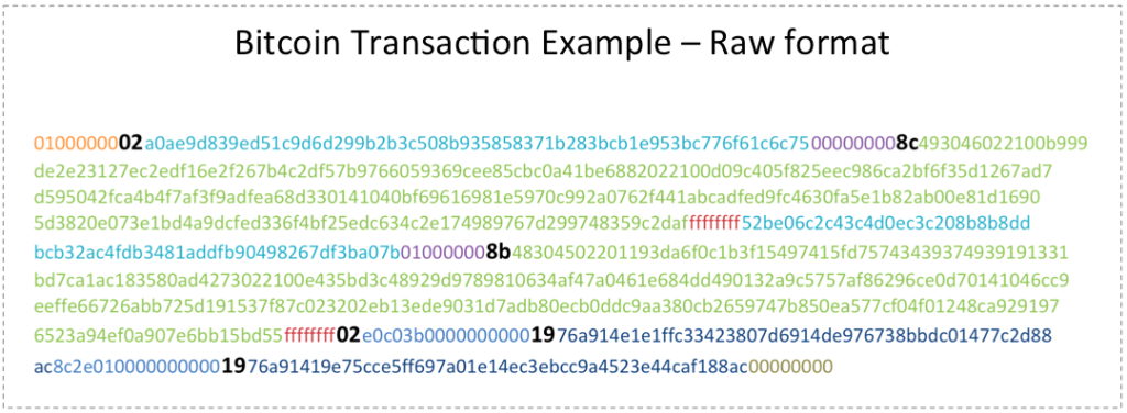 Bitcoin Transaction Raw Example
